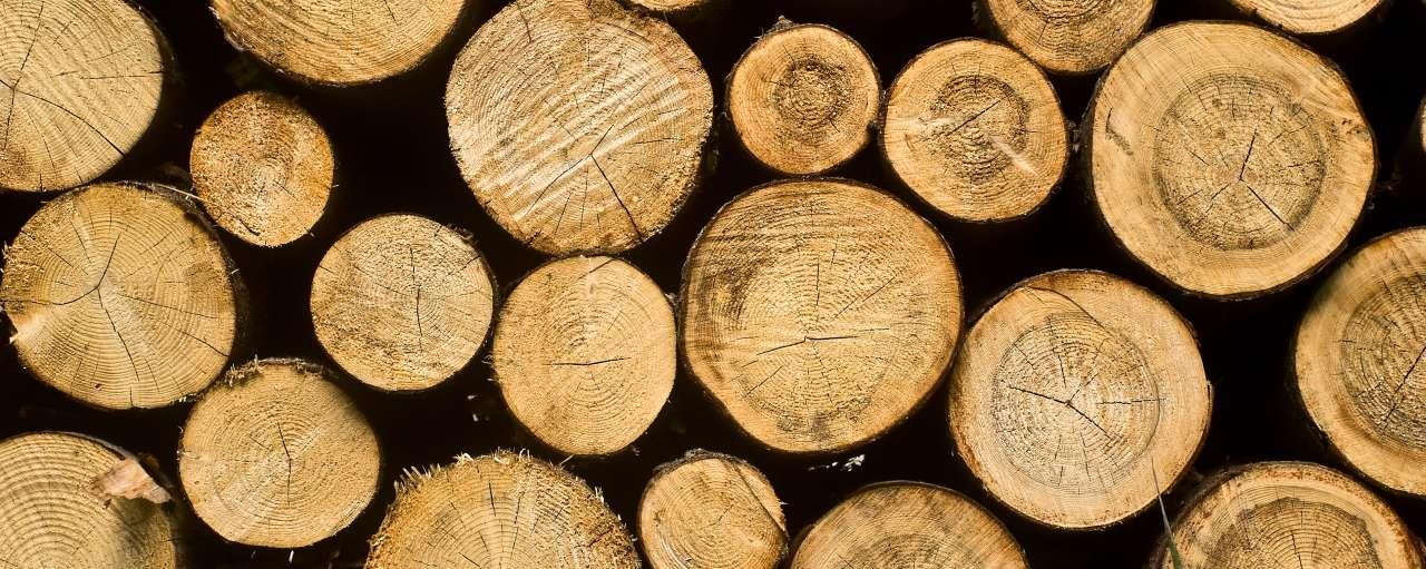 Houtskool & Briketten van duurzame bron